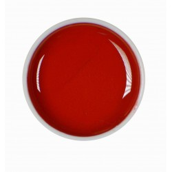 Gel color UV - Nr. 24 - 5 ml