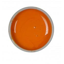 Gel color UV - Nr. 43 - 5 ml