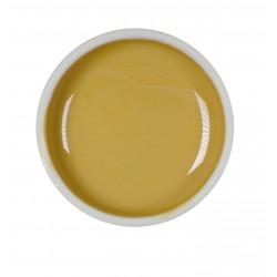 Gel color UV - Nr. 79 - 5 ml