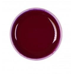 Gel color UV - Nr. 13 - 5 ml
