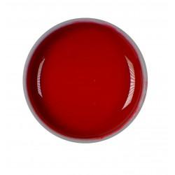 Gel color UV - Nr. R-77 - 5 ml